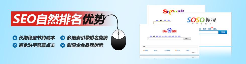 成都SEO第一品牌专业服务介绍